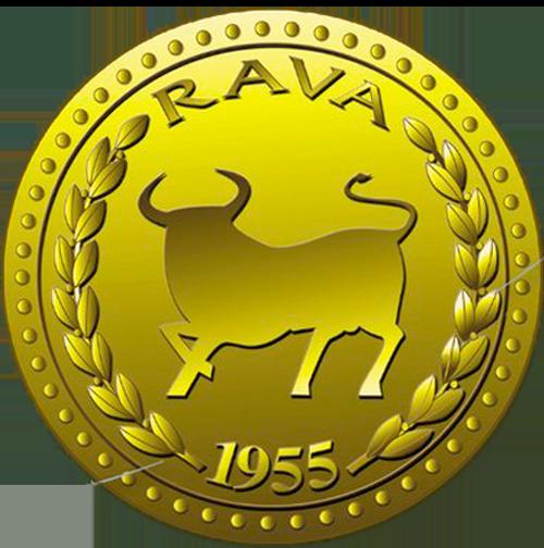 Rava Bursátil